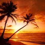 tropical-beach-sunset
